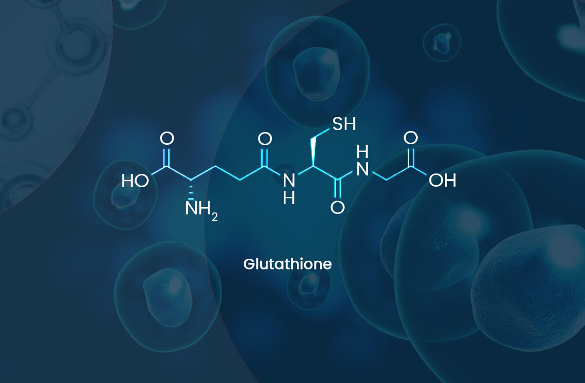 How Do Cells Produce Glutathione