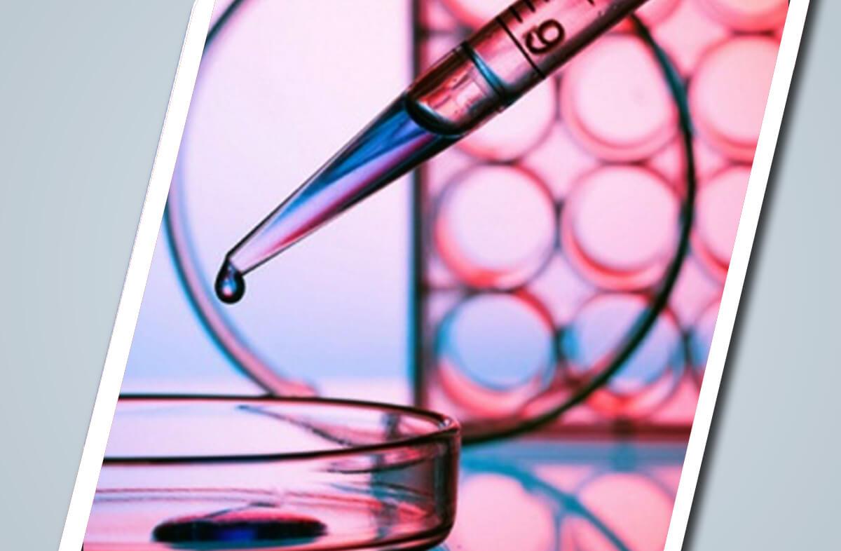 Measuring Cellular Glutathione Concentration