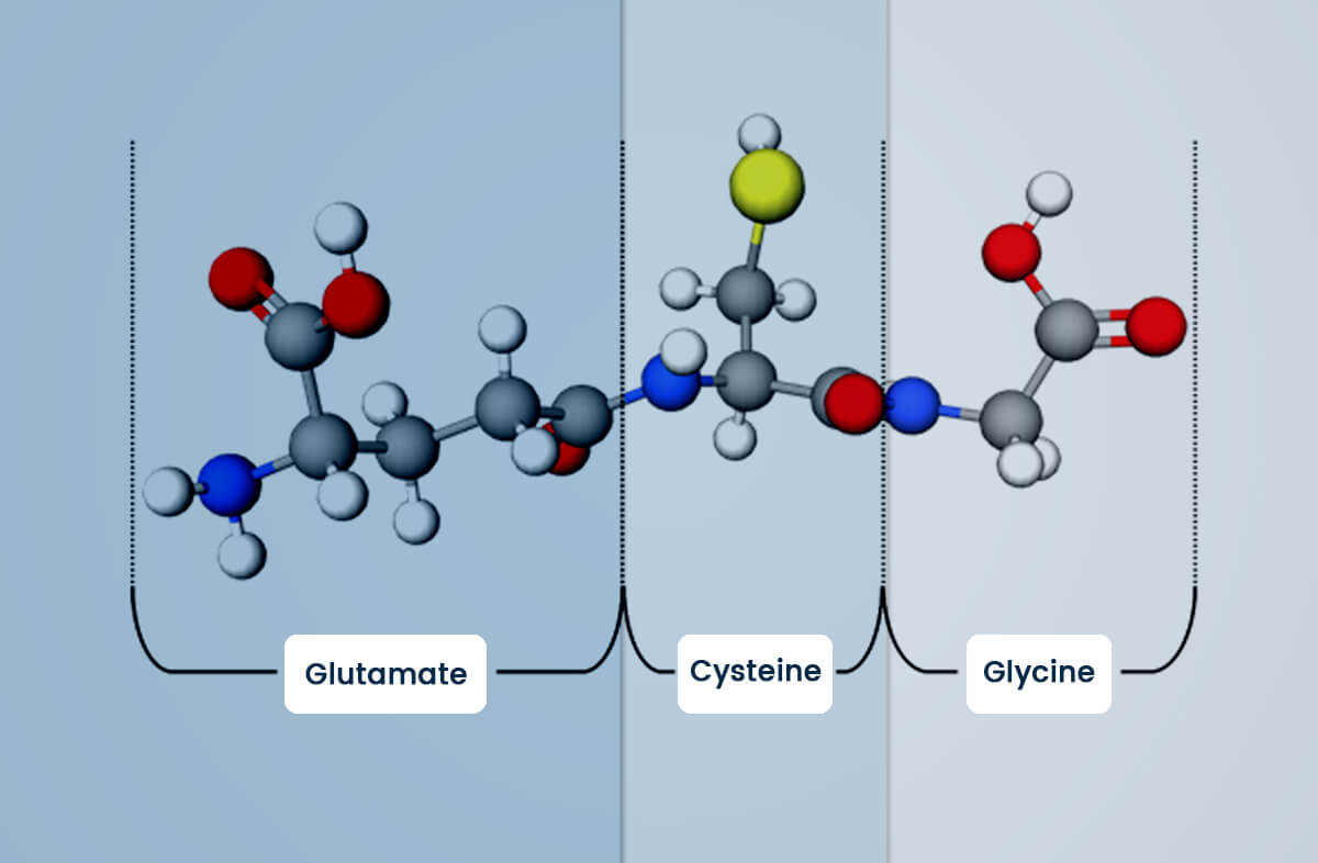 What is Glutathione